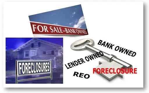 what is an reo