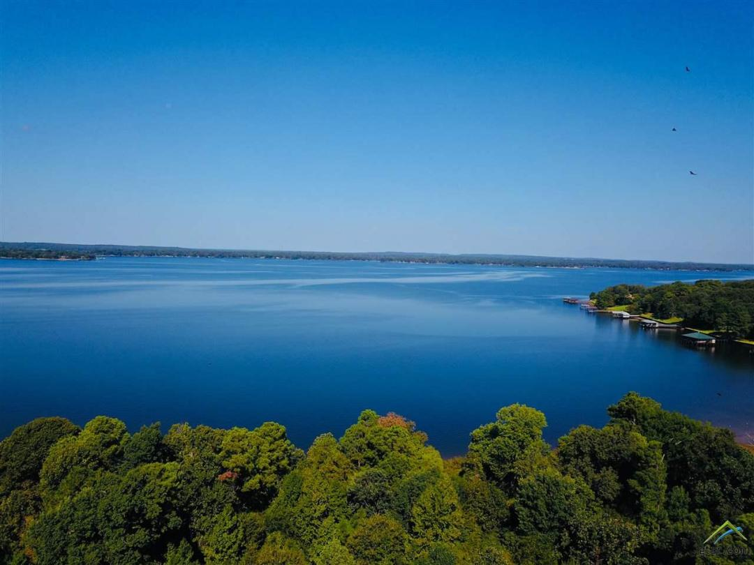 Lake Palestine Real Estate Land for Sale