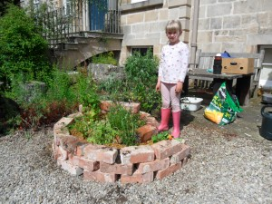 raised bed,herb spiral session- pitgaveny house 06.07 (5)(1)