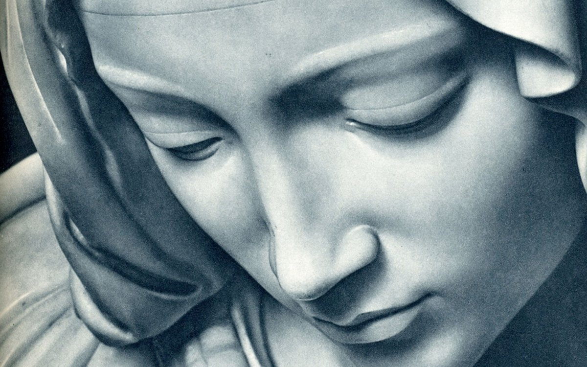 The Assumption of Mary: Is It Reasonable To Believe?
