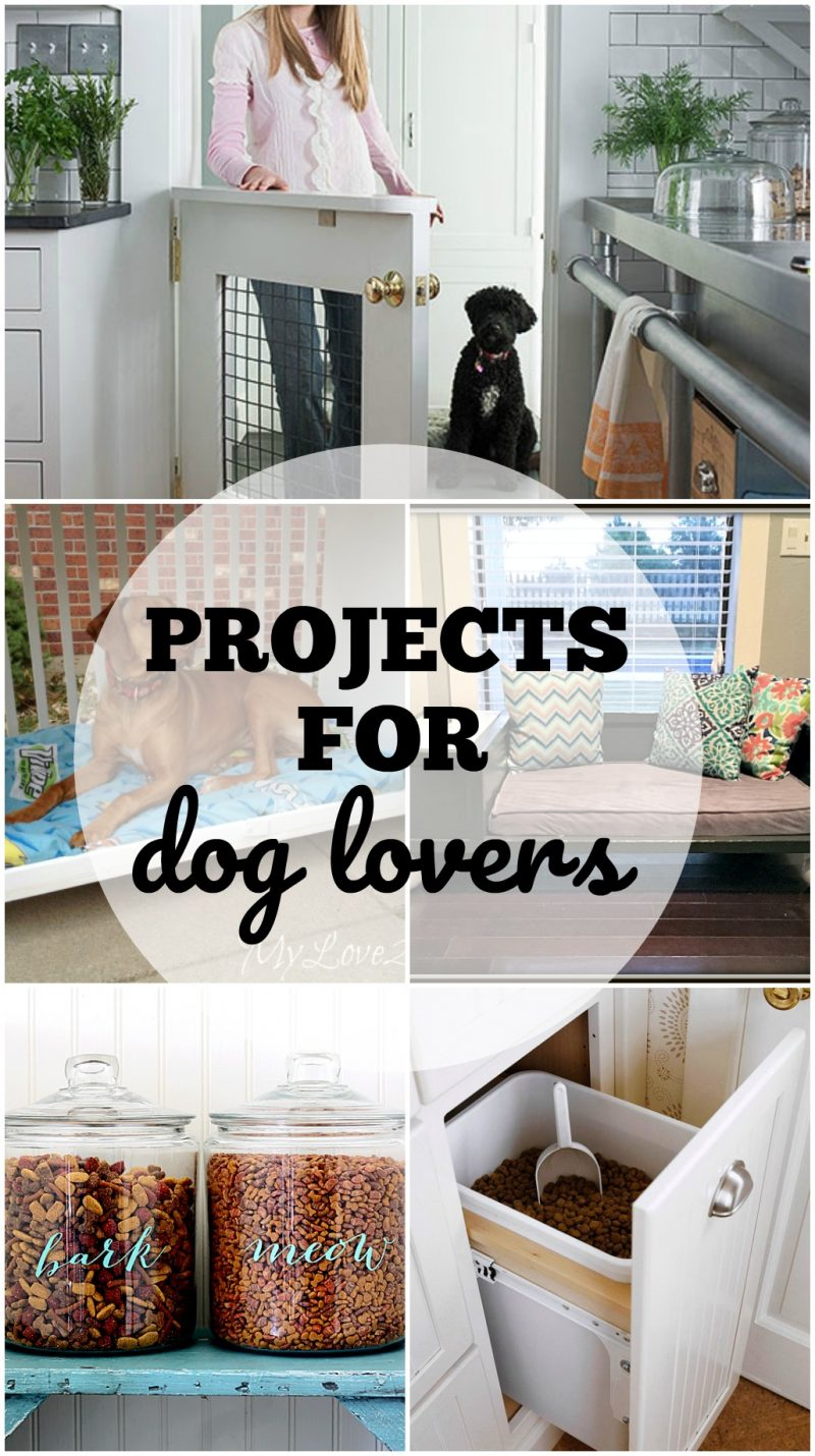 Projects for Dog Lovers - easy to make and less expensive than buying in the store!
