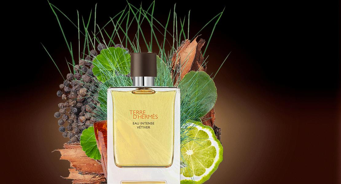 Terre d'Hermès Eau Intense Vétiver new perfume for men 2018