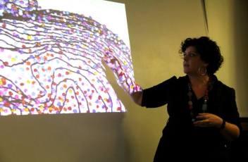 Rebecca Harris artist talk at Eden Project