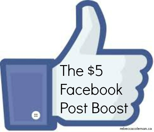 the 5 dollar facebook post boost