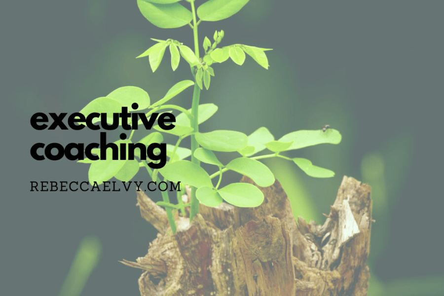 executive coaching heading on background photo of new growth sprouting from dead tree stump