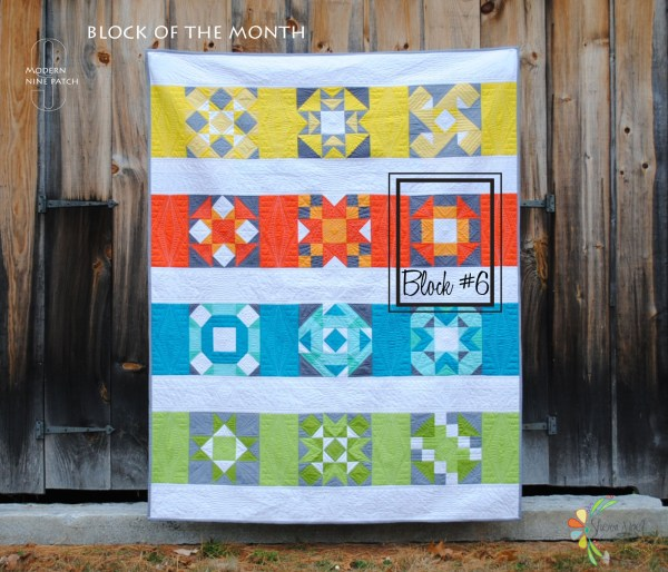full quilt with block 6 boxed 0127