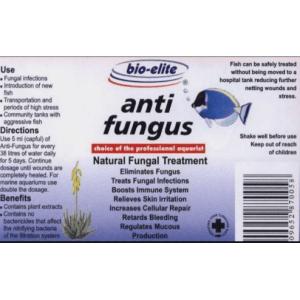 A312x AntiFungus Label at Rebel Pets