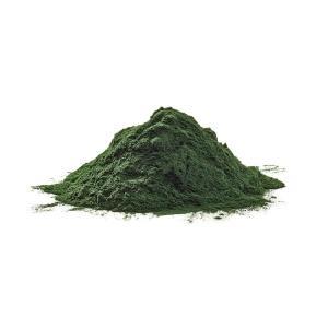 Pure Spirulina Powder at Rebel Pets