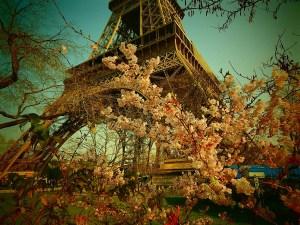 © Bron: Pixabay - eiffel-tower-361093_1280