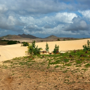 rough grass, sand with mountains in the background