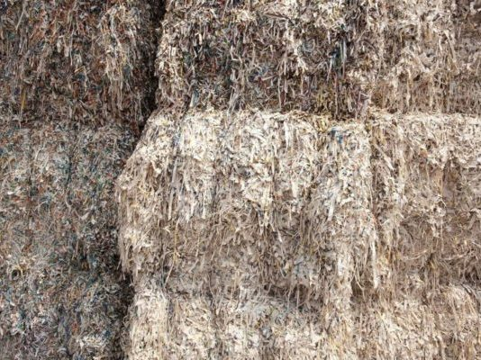 Recycled paper pulp