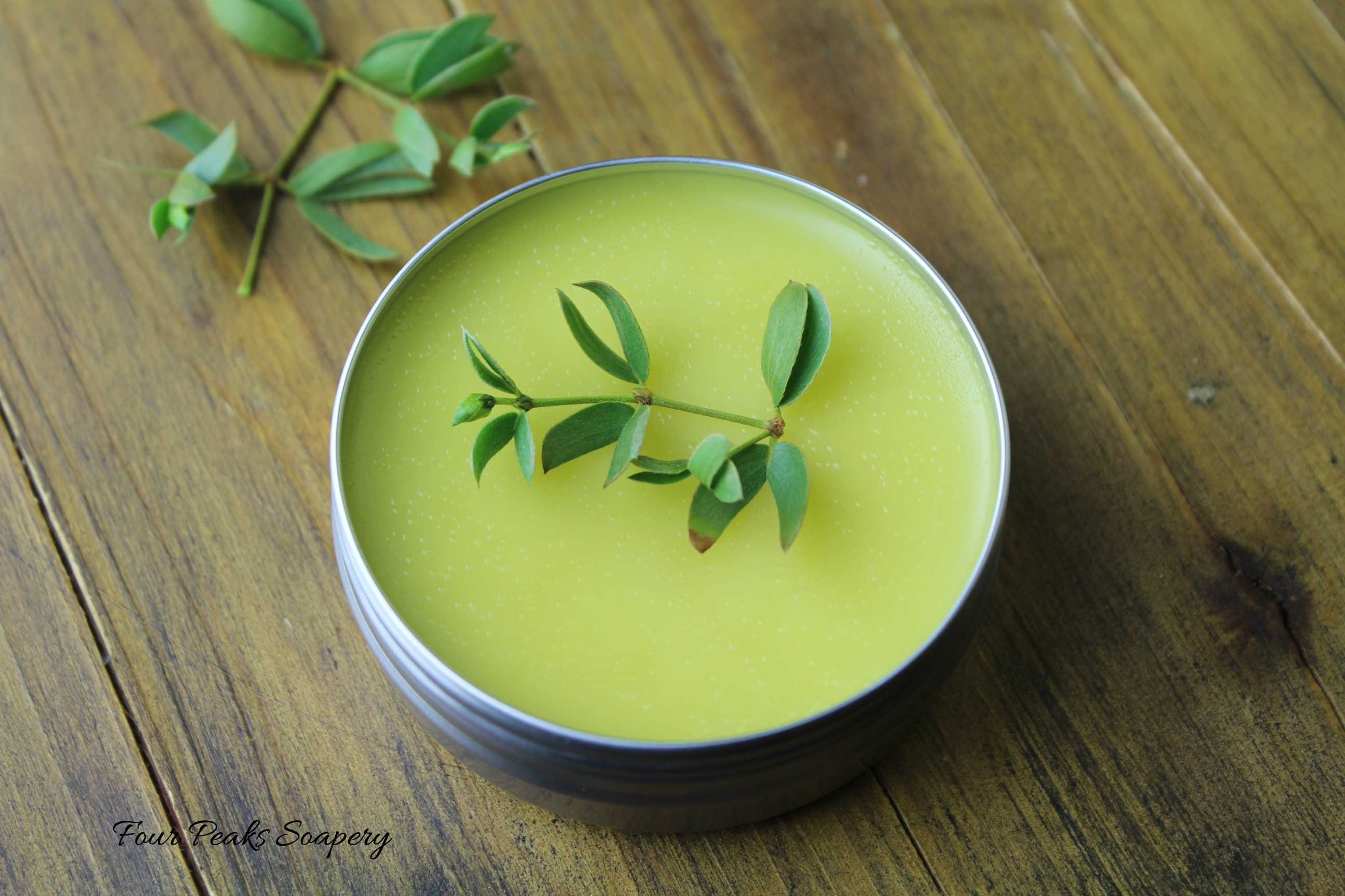 Chaparral salve - a simple soothing blend of chaparral, olive oil and beeswax, wonderful to support minor cuts, scrapes, burns and dry skin.