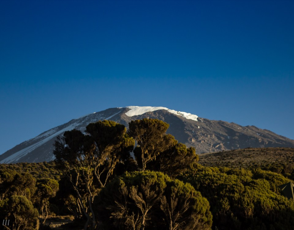 The Kilimanjaro summit in the distance