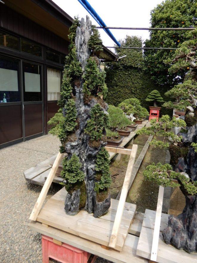 Rock Plantings By Master Masahiko Kimura Rebs Website