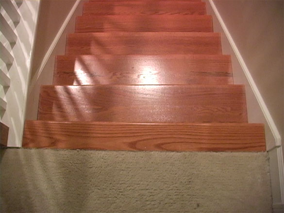 wood treats to carpeting