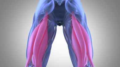 Photo of Pulled Hamstring – Causes, Symptoms, And Treatment