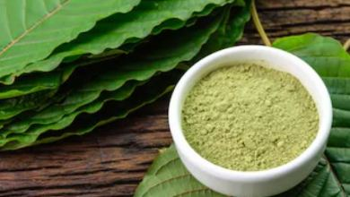 Photo of Why Do People Prefer to Consume Kratom Strains?