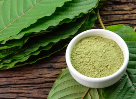 Why Do People Prefer to Consume Kratom Strains
