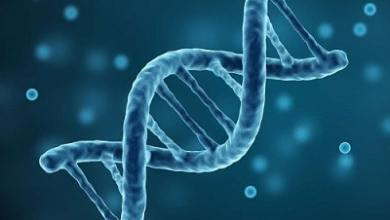 Photo of Bioinformatics Market to grow at an impressive rate of 10.87% through 2026 | TechSci Research