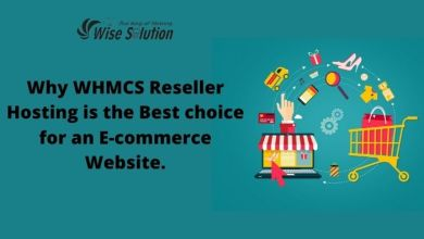 Photo of Why WHMCS Reseller Hosting is the Best choice for an E-commerce Website.