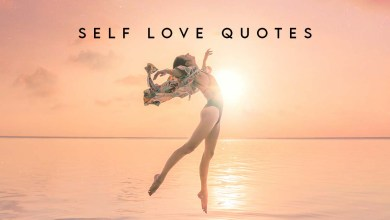 Photo of Top 40 Self Love Quotes | Importance of Self Love