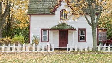 Photo of Lawn and House Curb Appeal Ideas