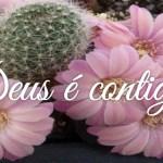 Deus é contigo!