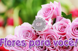 Flores para você!