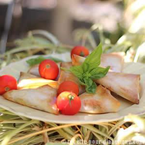 samoussas-tomate-mozarella