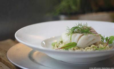 cabillaud-risotto-fenouil