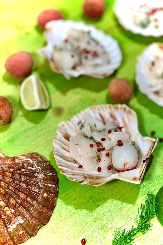 carpaccio saint-jacques lychee