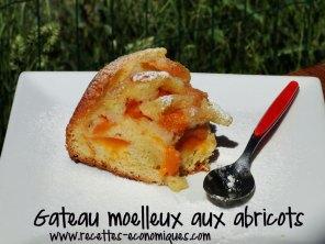 recette-moelleux-abricots