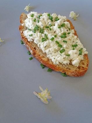 tartine-fromage-frais-ciboulette (18)