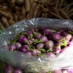 Légumes & condiments - mini aubergines - étal de marché en Thaïlande