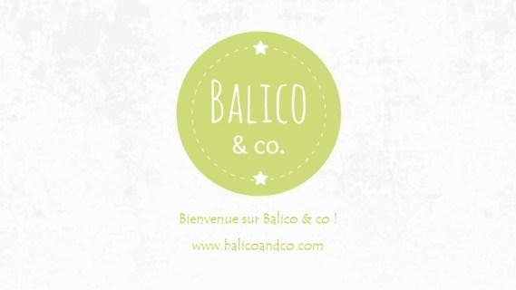 Logo 2 Balico and co.com