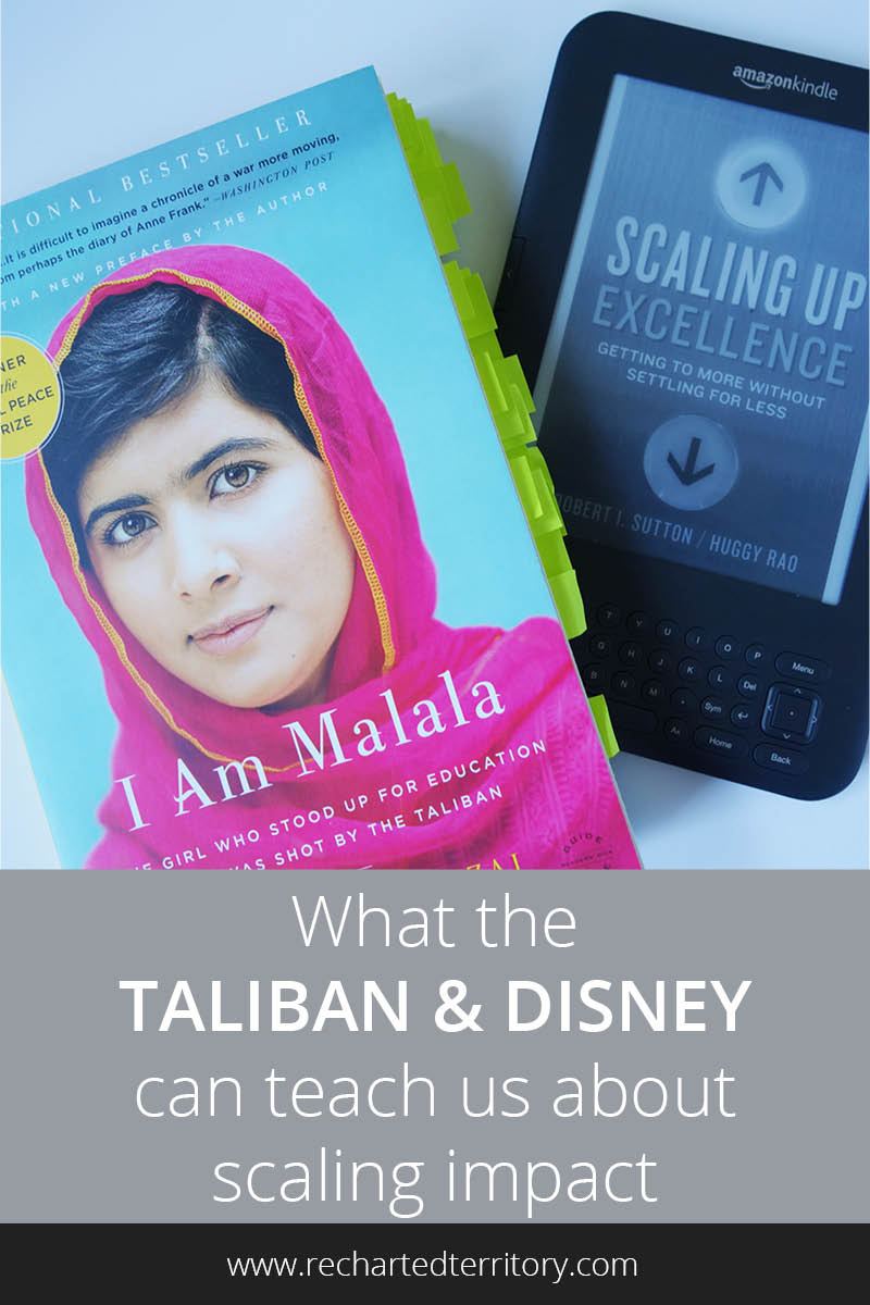 What the Taliban and Disney can teach us about scaling impact