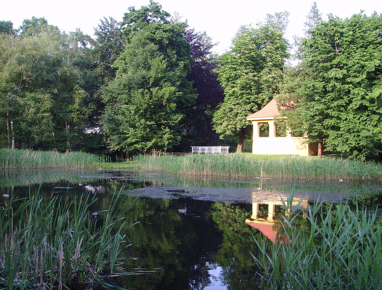 Foto vom Schlosspark mit Teich und altem Baumbestand.