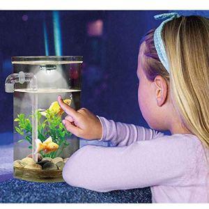 Wonder Fish Aquarium Aquarium Grande Taille