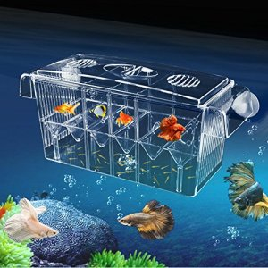 Gorgebuy Haute Clair Poisson d'élevage Box Aquarium Éleveurs Box Boîte Multifonction Écloserie Box Double Couche Fish Tank