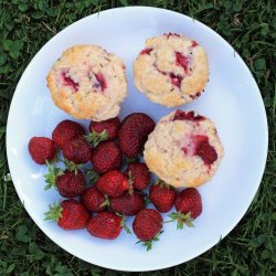 three strawberry muffins and a bunch of whole fresh strawberries on a white plate resting in the grass
