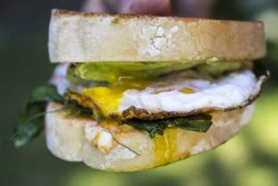 pea shoots and avocado breakfast sandwich|www.recipefiction.com