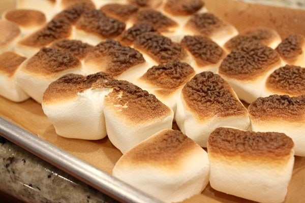 Toasted Marshmallow Brownie Ice Cream 1