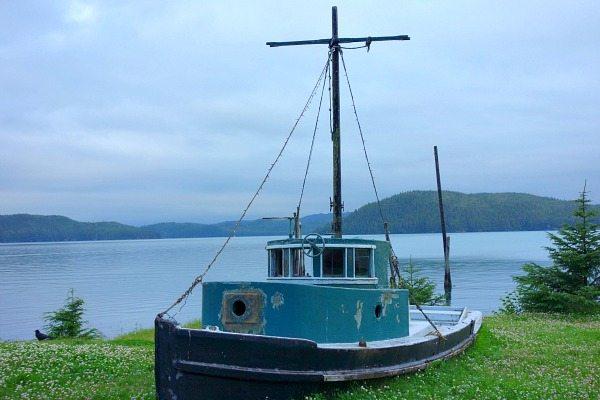 Orca Adventure Lodge 3