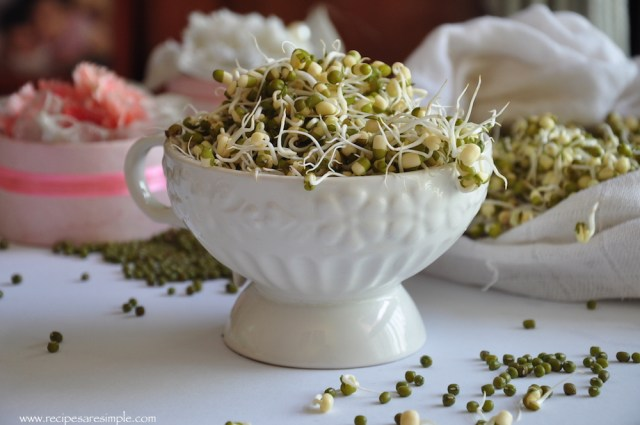 how to sprout mung beans 1