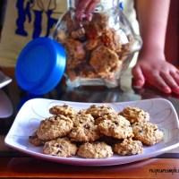 oatmeal chocolate chip cookies video recipe