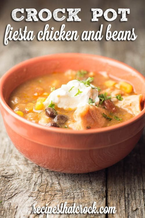 Crock Pot Fiesta Chicken and Beans: Great one pot dish! Perfect on its own, over rice or on a tortilla.