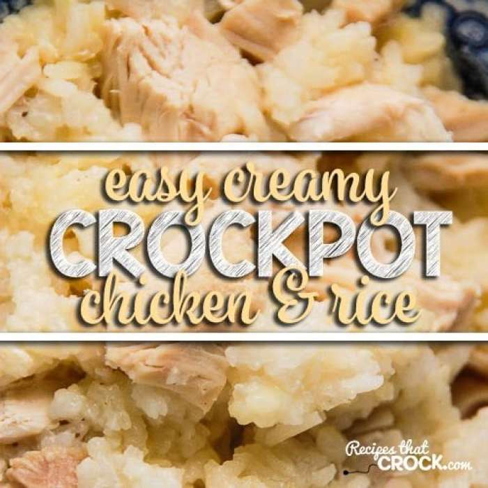 Easy Creamy Crock Pot Chicken and Rice! So simple to throw together.