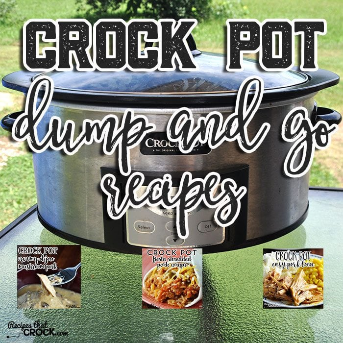 These Crock Pot Dump and Go Recipes are awesome!