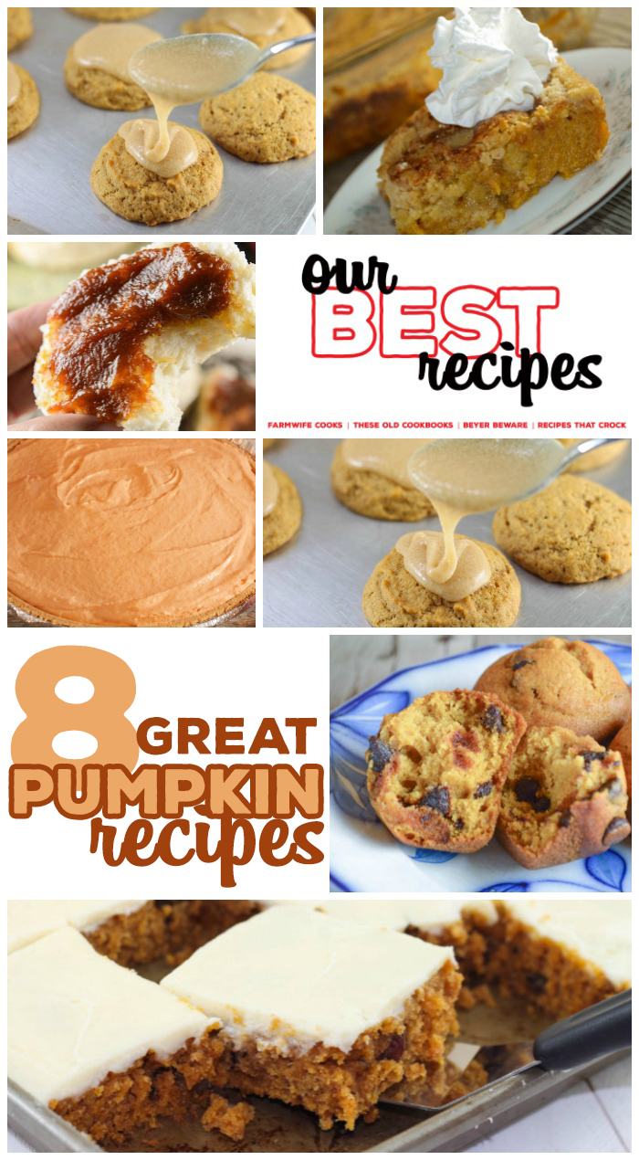 This collection of 8 Great Pumpkin Recipes includes Pumpkin Cookies, Pumpkin Muffins, Pumpkin Butter, Pumpkin Pies and Pumpkin Cakes! These easy recipes are great for fall and holiday meals!