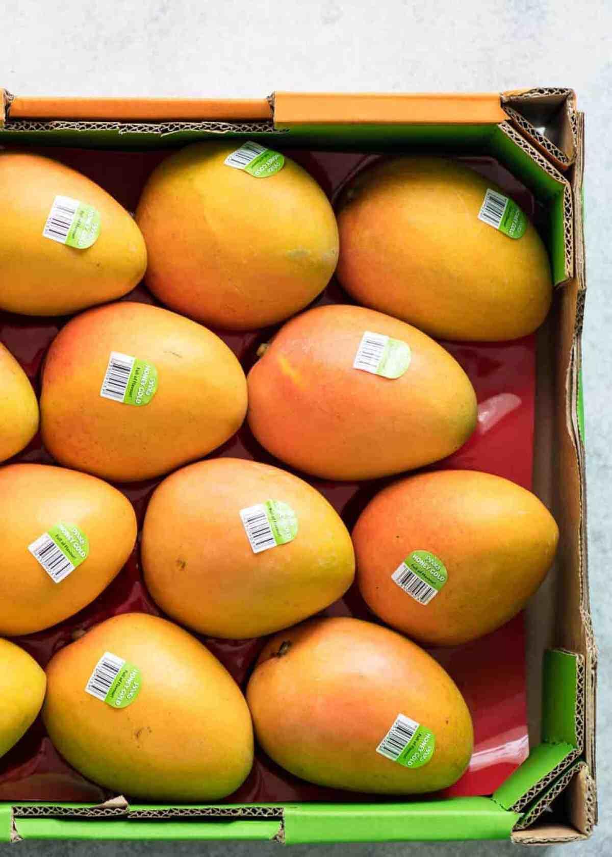 Ripe mangoes for Mango Cheesecake